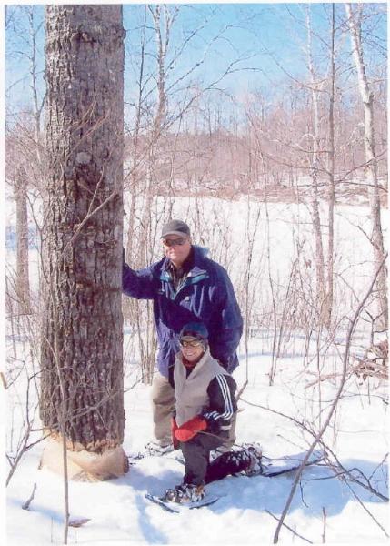 HT_J_Beaver_Tree_2_25_05_2