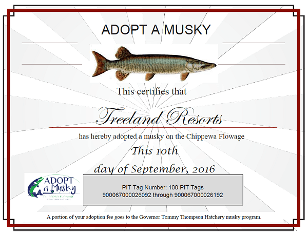 Treeland Pit Tag Certificate